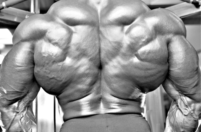 Bodybuilder © bialepento on Youtube